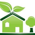 plants website development